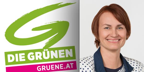 Helene Jarmer, Die Grünen