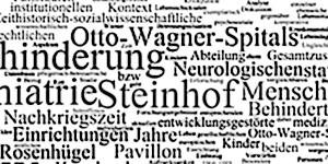 Forschung Steinhof Pavillon 15